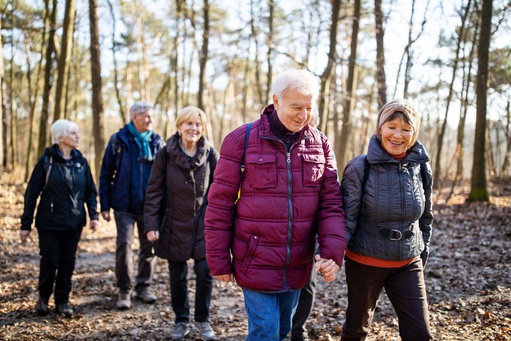 Fotobeschreibung: Eine Gruppe aus fünf Senioren wandert im Herbst durch einen Wald.
