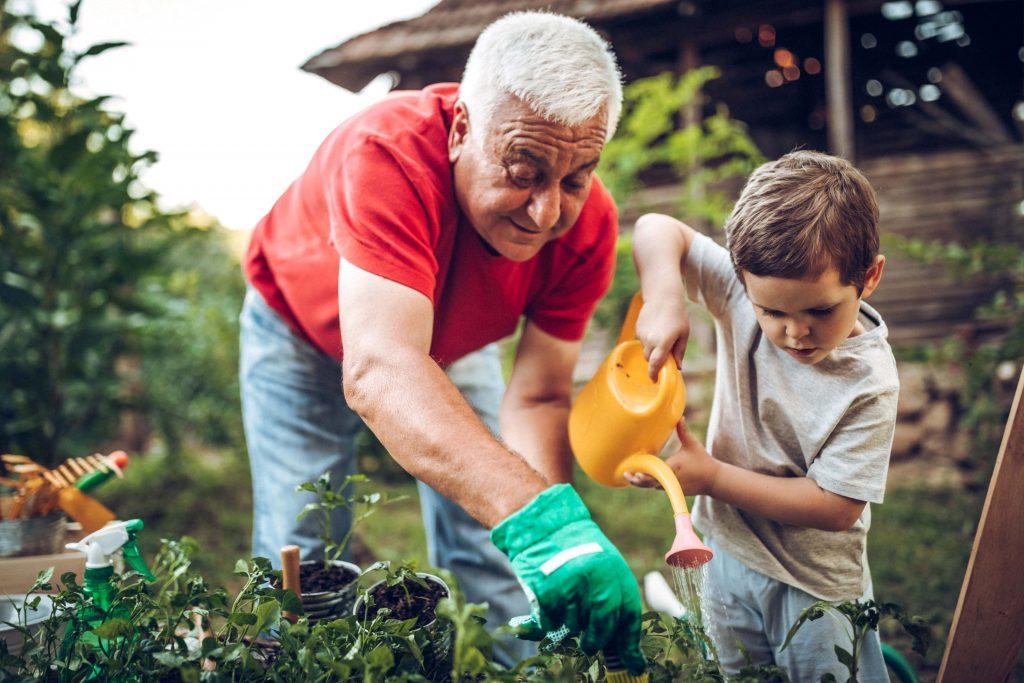 Fotobeschreibung: Ein Großvater gießt zusammen mit seinem Enkelkind Blumen im Garten. Es ist Sommer und die beiden tragen Jeans und T-Shirts.