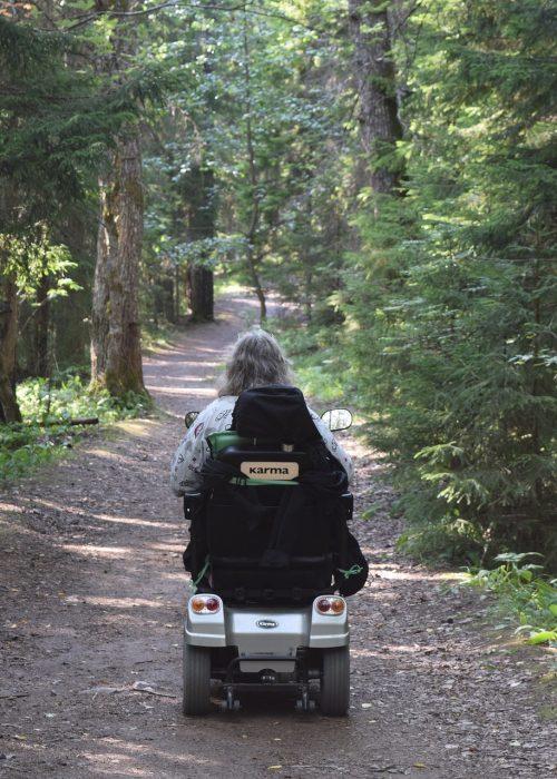 Fotobeschreibung: Rückansicht eines Senioren in einem elektrischen Rollstuhl, der einen Waldweg entlang fährt.